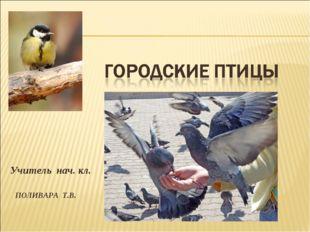 Учитель нач. кл. ПОЛИВАРА Т.В.
