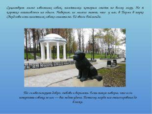 Существует много известных собак, памятники которым стоят по всему миру. Но я