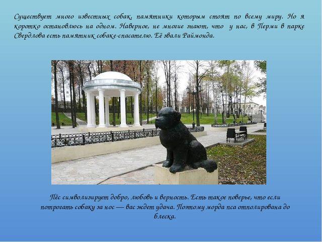 Существует много известных собак, памятники которым стоят по всему миру. Но я...