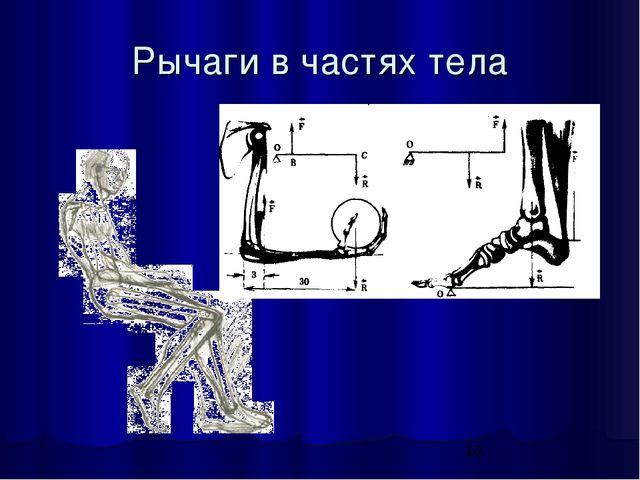 Рычаги в частях тела