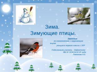 Зима. Зимующие птицы. Занятие по ознакомлению с окружающим миром учащихся пе