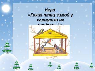 Игра «Каких птиц зимой у кормушки не увидишь?»