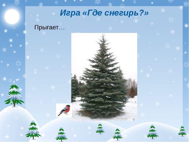 Игра «Где снегирь?» Прыгает…