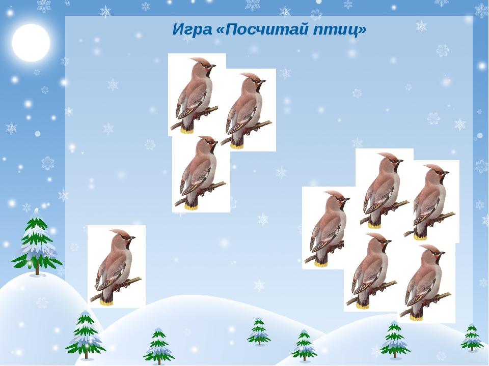 Игра «Посчитай птиц»