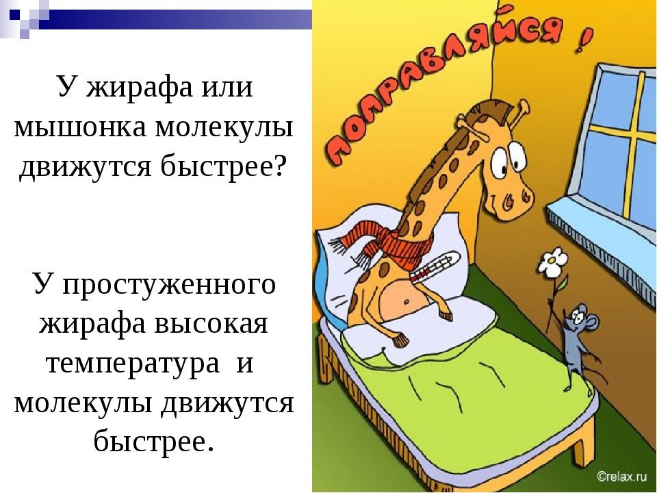У жирафа или мышонка молекулы движутся быстрее? У простуженного жирафа высока...