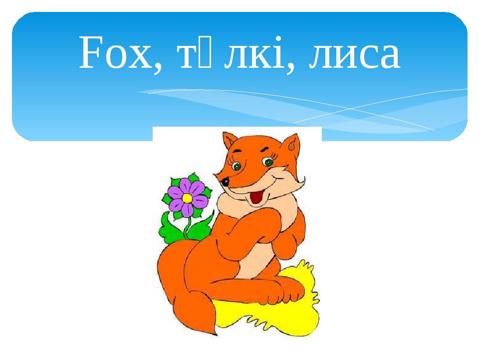 Fox, түлкі, лиса