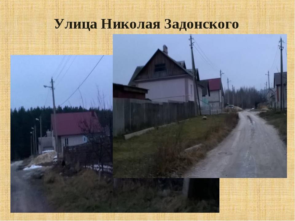 Улица Николая Задонского