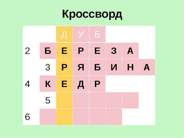 Кроссворд 1 Д У Б 2 Б Е Р Е З А 3 Р Я Б И Н А 4 К Е Д Р 5 6
