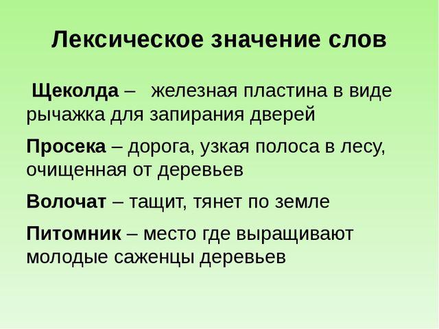 Лексическое значение слов Щеколда – железная пластина в виде рычажка для запи...