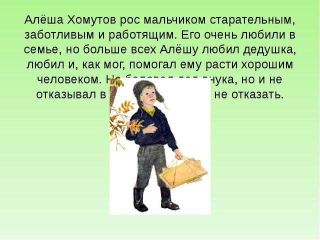 Алёша Хомутов рос мальчиком старательным, заботливым и работящим. Его очень л...
