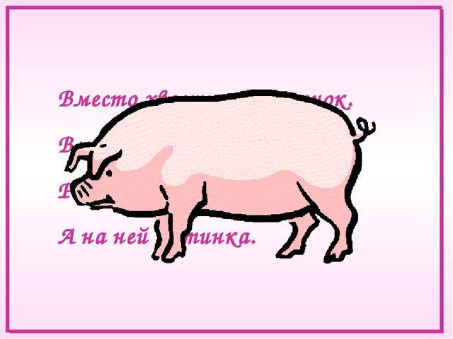 Вместо хвостика – крючок. Вместо носа – пятачок. Розовая спинка, А на ней щет...