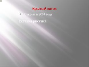 Крытый каток Открыт в 2014 году