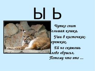 Ы Ь  Чутко спит большая кошка, Уши в кисточках-сережках. Ей не скажешь сл