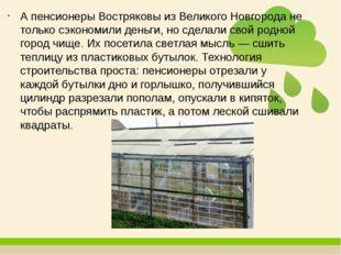 А пенсионеры Востряковы из Великого Новгорода не только сэкономили деньги, но