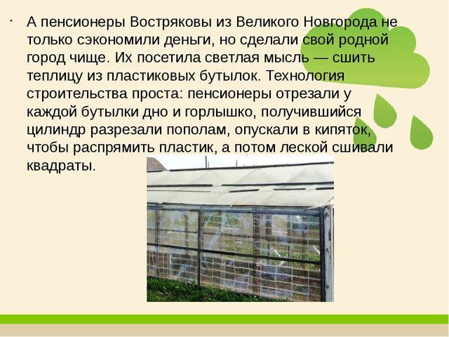 А пенсионеры Востряковы из Великого Новгорода не только сэкономили деньги, но...