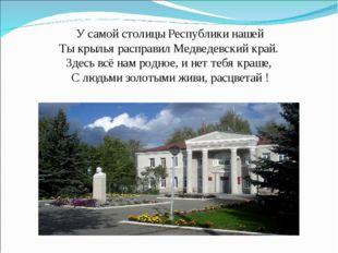 У самой столицы Республики нашей Ты крылья расправил Медведевский край. Зд