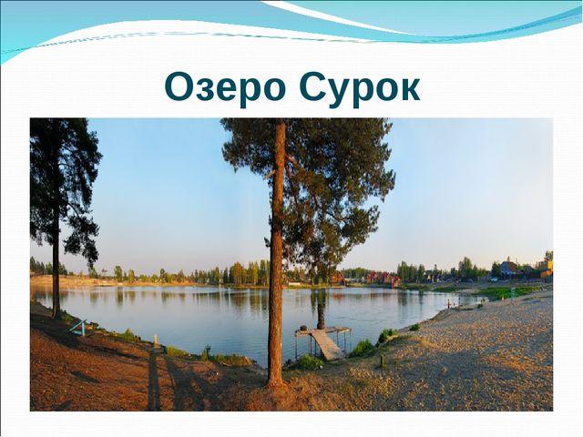 Озеро Сурок