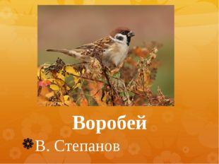 Воробей В. Степанов