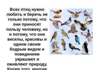 Всех птиц нужно любить и беречь не только потому, что они приносят пользу че