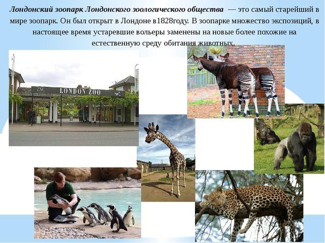 Лондонский зоопарк Лондонского зоологического общества — это самый старейший...