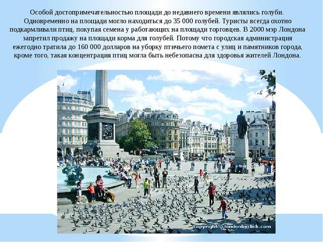 Особой достопримечательностью площади до недавнего времени являлись голуби. О...