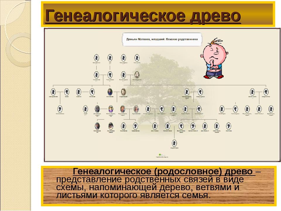 Генеалогическое древо Генеалогическое (родословное) древо – представление р...
