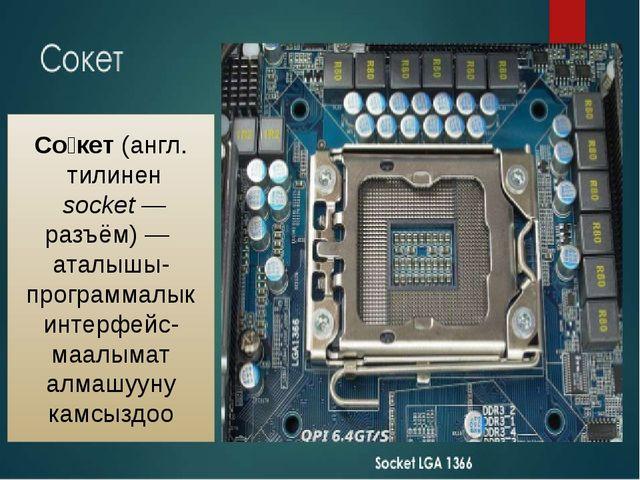 Со́кет(англ. тилинен socket— разъём) — аталышы-программалык интерфейс-маал...
