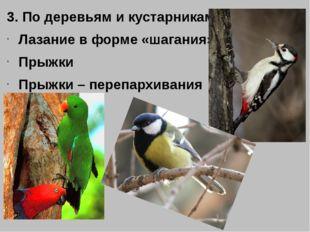3. По деревьям и кустарникам Лазание в форме «шагания» Прыжки Прыжки – перепа