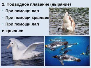 2. Подводное плавание (ныряние) При помощи лап При помощи крыльев При помощи