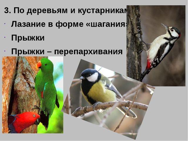 3. По деревьям и кустарникам Лазание в форме «шагания» Прыжки Прыжки – перепа...