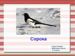Подготовила Жарченко Настя 2 а класс Сорока