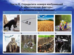 Часть В. Определите номера изображений А- абиотические факторы: Б – антропоге