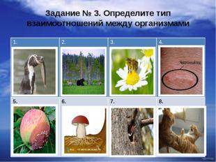 Задание № 3. Определите тип взаимоотношений между организмами 1. 2. 3. 4. 5.