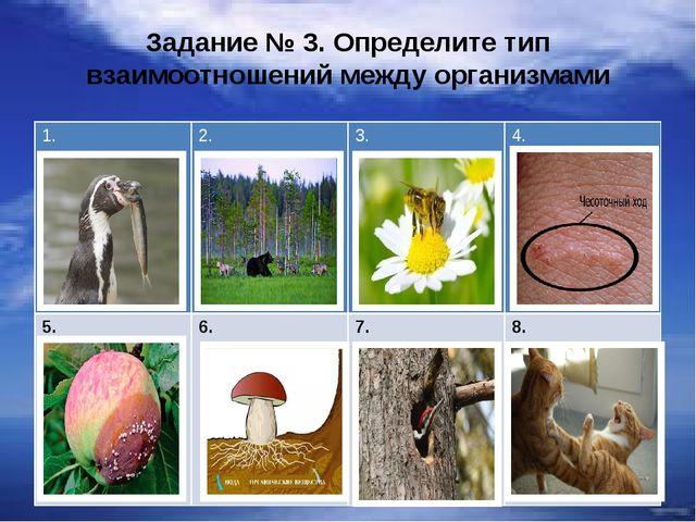 Задание № 3. Определите тип взаимоотношений между организмами 1. 2. 3. 4. 5....
