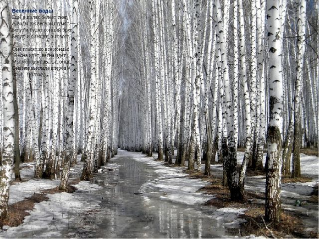 Весенние воды Ещё в полях белеет снег, А воды уж весной шумят — Бегут и будят...