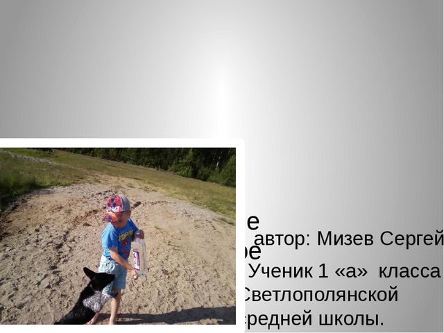 Моё любимое животное автор: Мизев Сергей. Ученик 1 «а» класса Светлополянско...