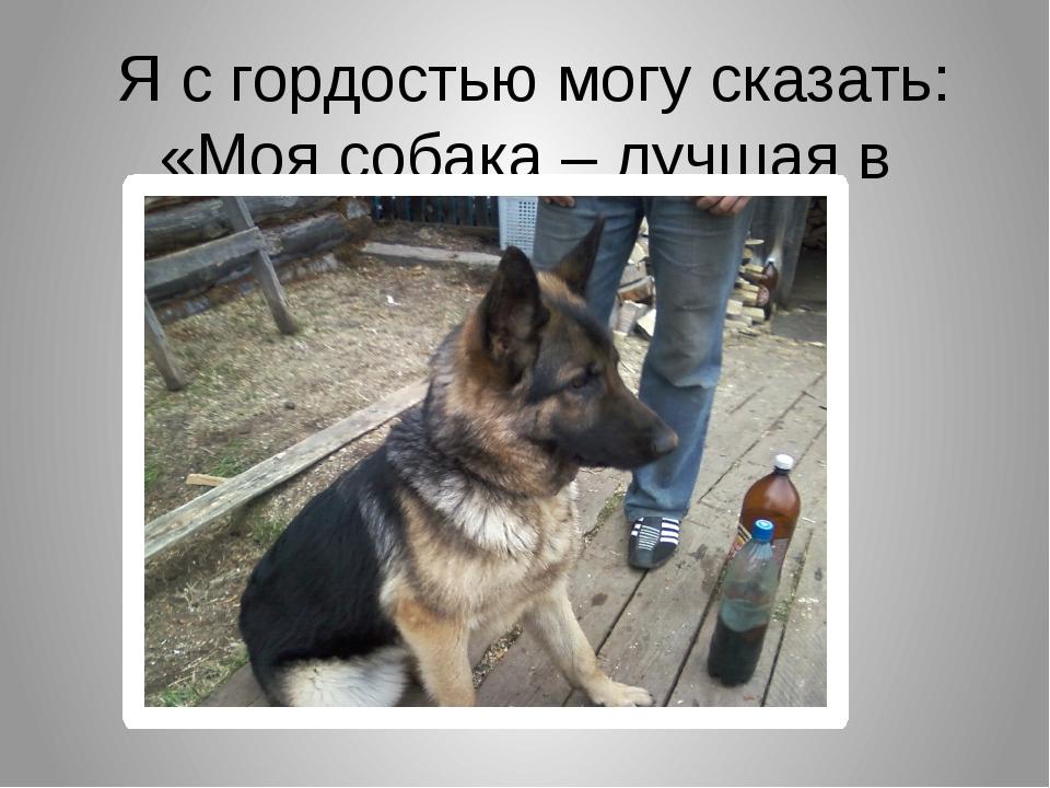 Я с гордостью могу сказать: «Моя собака – лучшая в мире!»