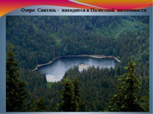 Озеро Свитязь - находится в Полесской низменности