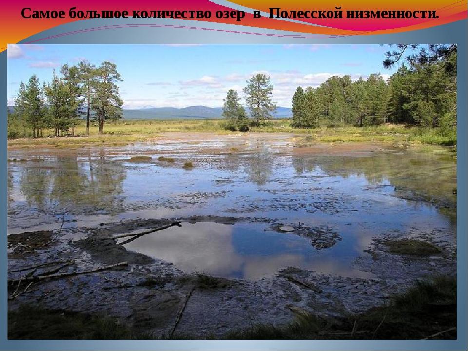 Самое большое количество озер в Полесской низменности.