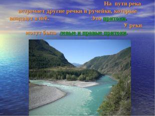 На пути река встречает другие речки и ручейки, которые впадают в неё. Это пр