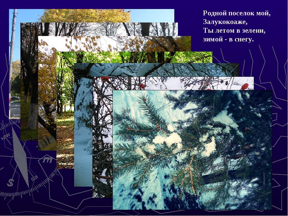 Родной поселок мой, Залукокоаже, Ты летом в зелени, зимой - в снегу.