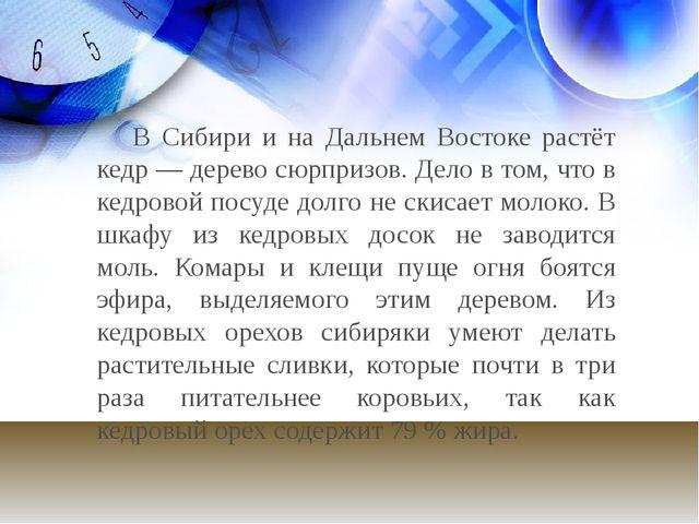 В Сибири и на Дальнем Востоке растёт кедр — дерево сюрпризов. Дело в том, чт...
