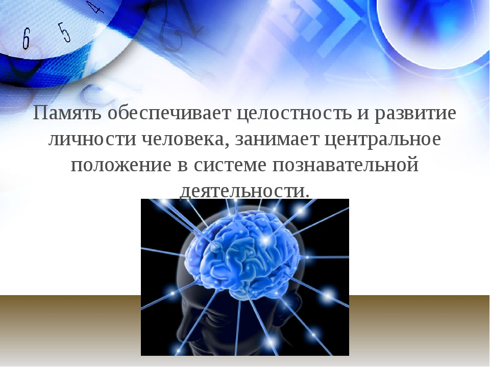 Память обеспечивает целостность и развитие личности человека, занимает центра...