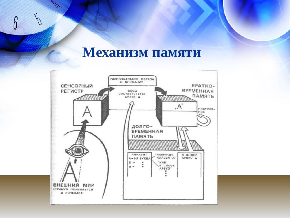 Механизм памяти