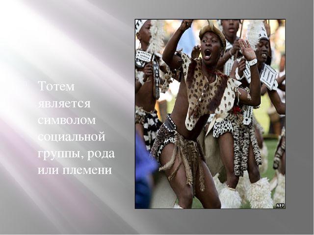 Тотем является символом социальной группы, рода или племени
