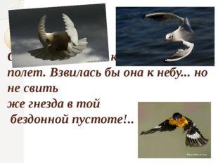 Слабеет взмах ее крыл; ныряет ее полет. Взвилась бы она к небу... но не свит
