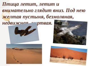 Птица летит, летит и внимательно глядит вниз. Под нею желтая пустыня, безмолв
