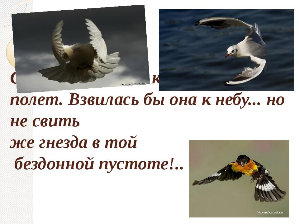 Слабеет взмах ее крыл; ныряет ее полет. Взвилась бы она к небу... но не свит...