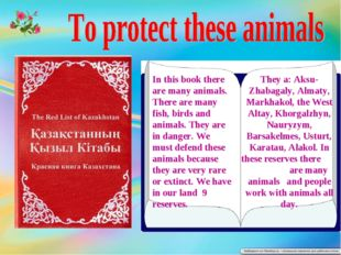 In this book there are many animals. There are many fish, birds and animals.