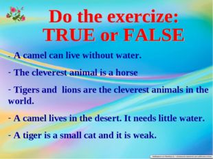 - A camel can live without water. The cleverest animal is a horse Tigers and